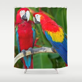 Two Splendid Spectacular Colorful Ara Parrots Flirting Close Up Ultra HD Shower Curtain