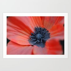 An Artificial Poppy Art Print