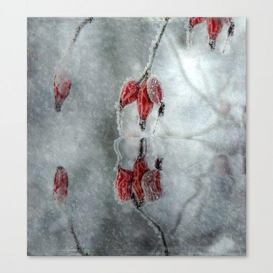 Purple cloak in winter Canvas Print