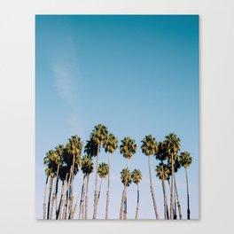 sunnyvale Canvas Print