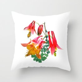 Wild Columbine, Aquilegia canadensis Throw Pillow