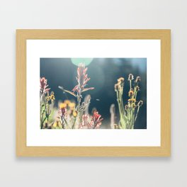 FALL FIELDS | 02 Framed Art Print