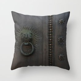 Dark Entry  Throw Pillow