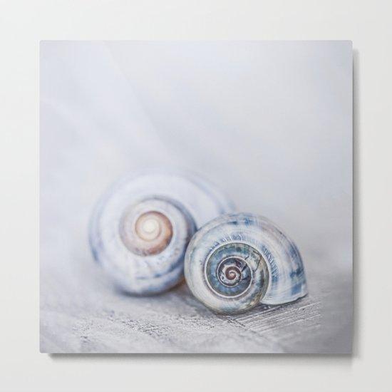Blue Shells on white washed wood  pastel blues Metal Print