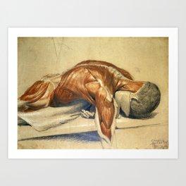 Vintage Anatomy Charles Landseer A Dissected Body Art Print