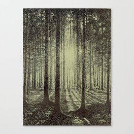 Victor Olgyay - Sunset - 1910 Sunrise Through Tree Forest Silhouette Canvas Print