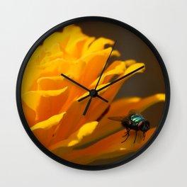 Zinnia Fly Wall Clock