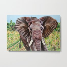 Elephant in the Grass Metal Print