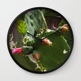 Summer Cactus in Flower Wall Clock
