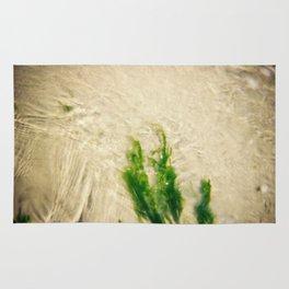 Seaweed Stories Rug