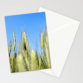 Field with cereal Stationery Cards