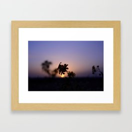 From a favorite spot Framed Art Print