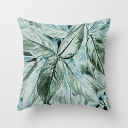 Changes II Throw Pillow