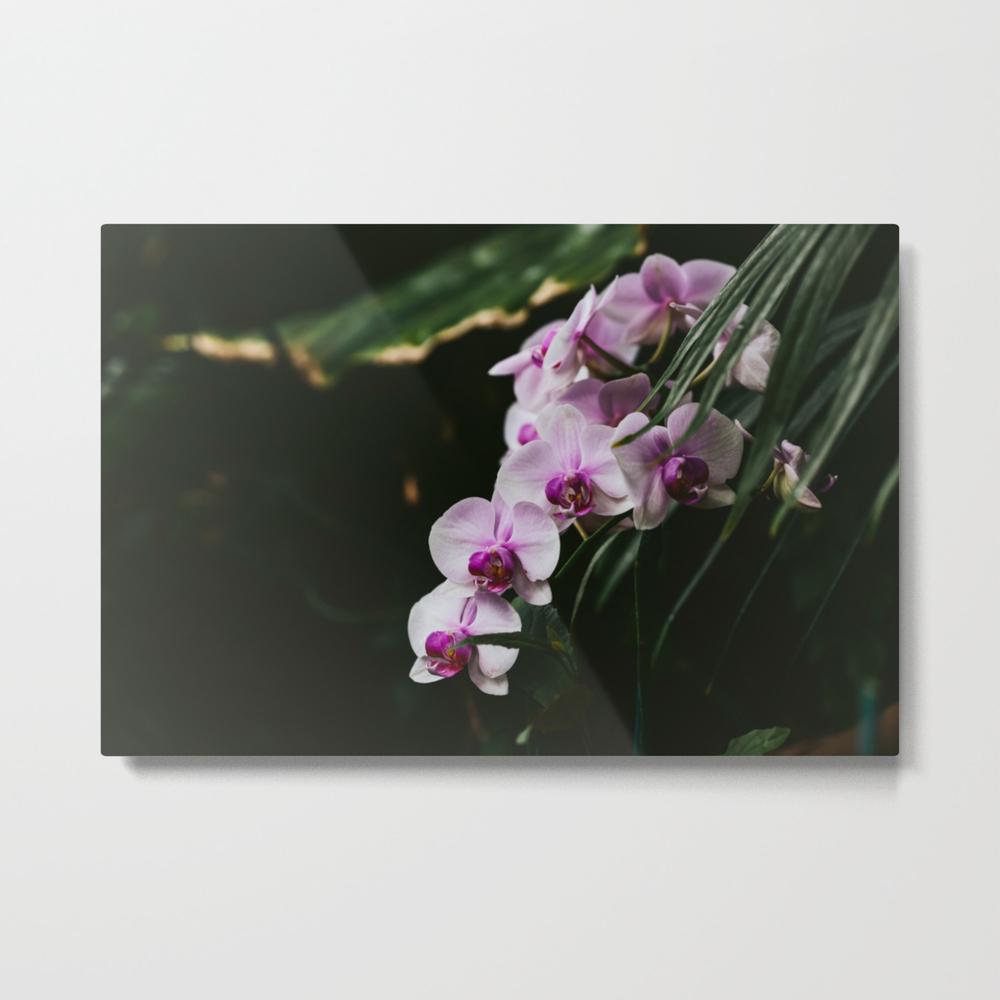 White & Purple Orchids Metal Print by Jillianvanzytveld MTP8947757