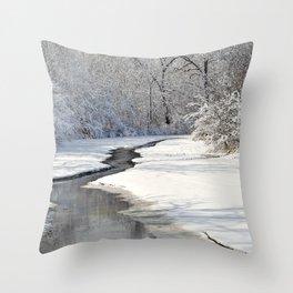 A quiet walk  Throw Pillow
