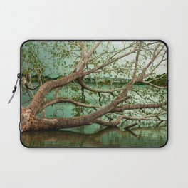 Wandering Branches Laptop Sleeve