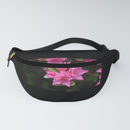Pink Azalea Coordinates, Choose Pink or Black Borders, Floral Photo Print Fanny Pack