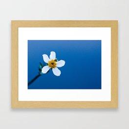 flower photography by Fidel Fernando Framed Art Print