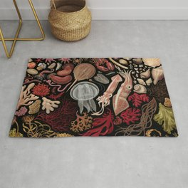 Intertidal Life of the North Atlantic (without species list) Rug