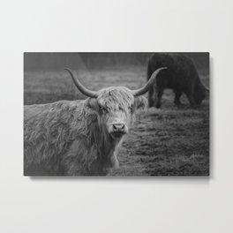 Highland Cow Black and White Photo Metal Print
