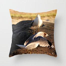 Seagull dance Throw Pillow