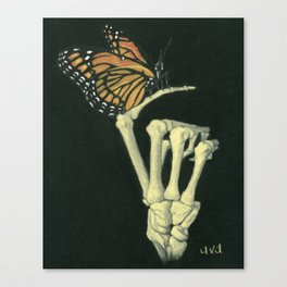 Butterfly & Bones Canvas Print