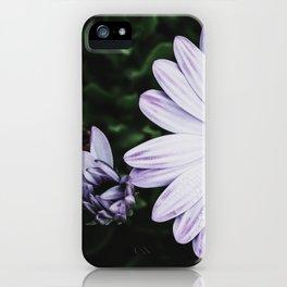 Damn Daisy iPhone Case