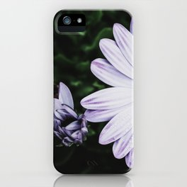 Damn Daisy iPhone Case