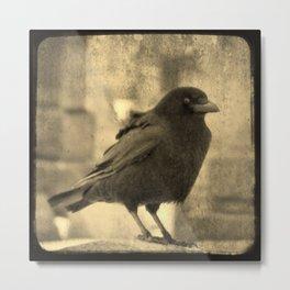 Antique Crow Metal Print