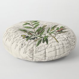 Chic paris scripts kitchen artwork french botanical leaf olive Floor Pillow