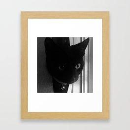 Bella Bella Framed Art Print
