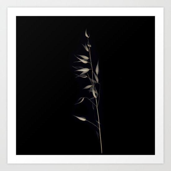 Herbarium 4 Art Print