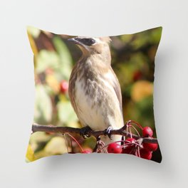 Cedar Waxwing in a Crab Apple Tree Throw Pillow