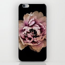 Lush Peony, Nobility And Honour iPhone Skin