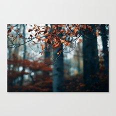 Hibernation Canvas Print
