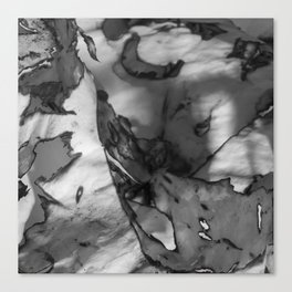 Burn 7 Canvas Print