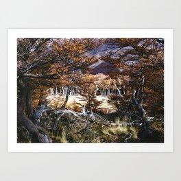 Fall in Patagonia, Argentina Art Print