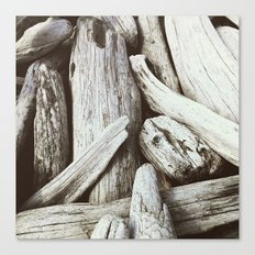 Driftwood pattern Beach photography Canvas Print