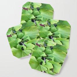 Ginkgo Leaves Coaster