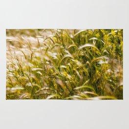 Golden wheat Rug
