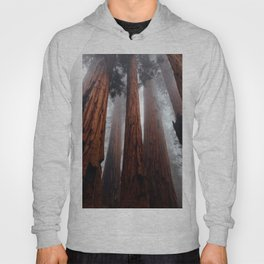 Woodley Forest Hoody