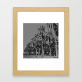 Date Palms in Arizona - Black & White Pencil Drawing Framed Art Print