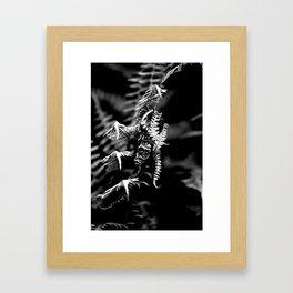 Dragons in the Ferns Framed Art Print