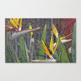 Birds of paradise flowers Canvas Print