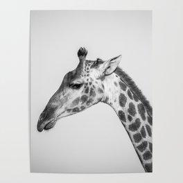 Chrome Giraffe Poster