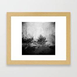 Multiple Exposure Framed Art Print