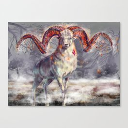 Argali , burning horns Canvas Print