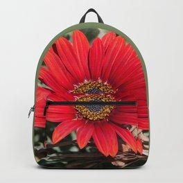Little red Gerbera Backpack