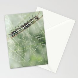 Nature Photography - Caterpillar Stationery Cards