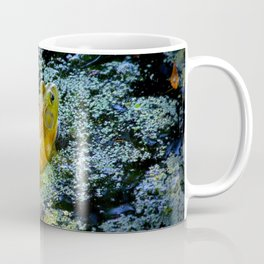 Bullfrog In The Swamp Coffee Mug